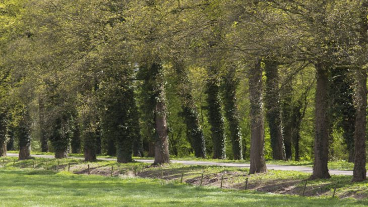 Landgoed Loenen